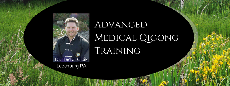 Bloodwork and Cancer and Medical Qigong